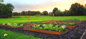 bac jardinage-annecy-potager-permaculturepermaculture