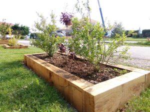 Bac-jardiniere-arbustes-chene