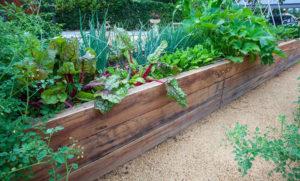 bac-jardin-urbain-potager