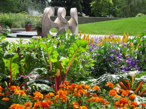 jardin gustatif de vegetaux et legumes