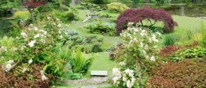 Jardin-paysagiste-aménagement-japonais