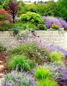 massif et jardin avec plantes aromatiques