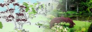 conception et realisation de jardin paysager - esquisse