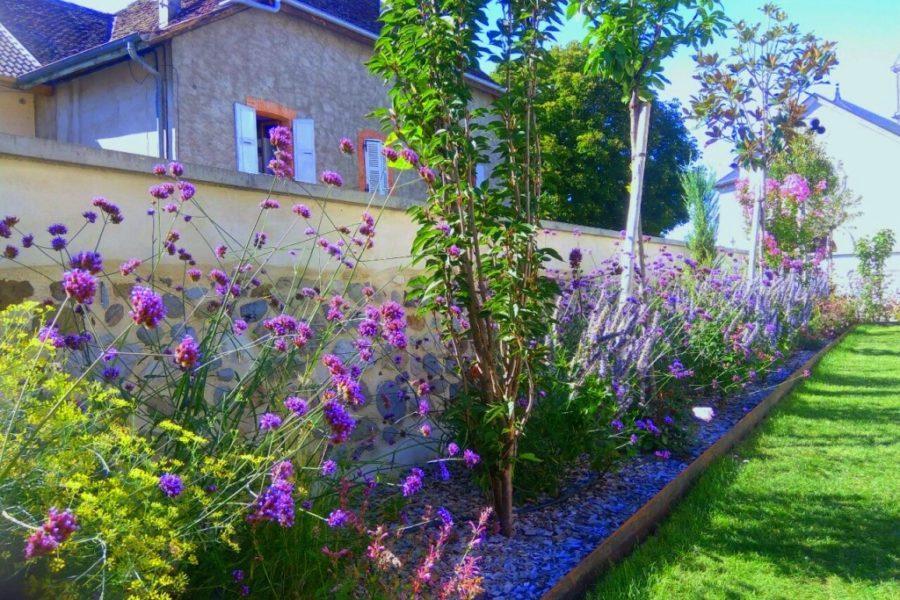 aysagiste-fleurs-arbustes